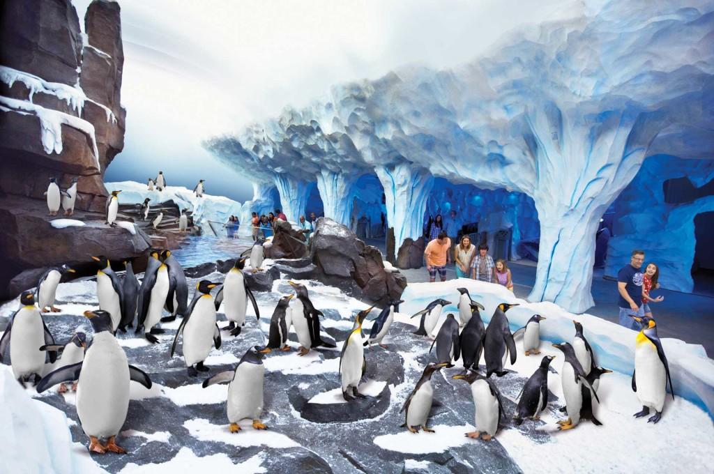 Antarctica Empire of the Penguin: SeaWorld Orlando