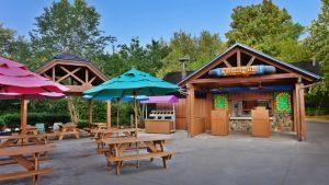 Parque Aquático Blizzard Beach na Disney Orlando