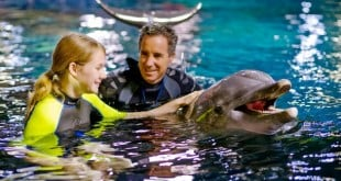 Atração Dolphins in Depth na Disney 1