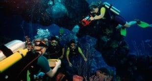 Seas Aqua Tour na Disney em Orlando 1