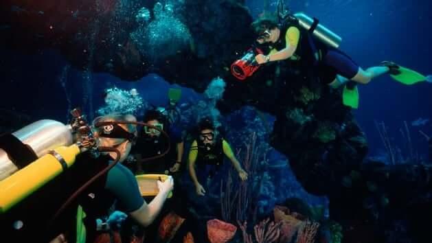 Seas Aqua Tour na Disney em Orlando