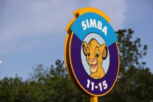 5 Dicas para não passar aperto em Orlando