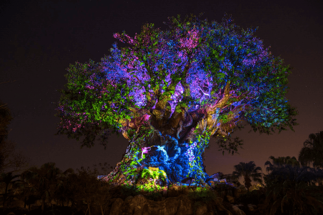 Shows, paradas e apresentações no parque Disney Animal Kingdom Orlando: Tree of Life - Árvore da Vida