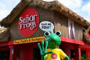 senor-frogs