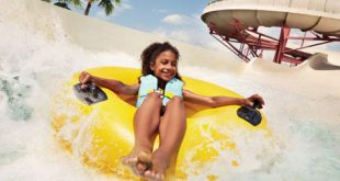 Parque Adventure Island Tampa Orlando 6