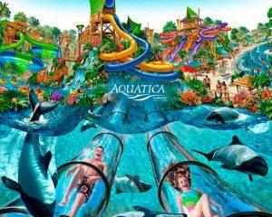 7 lugares para se refrescar em Orlando: Parque Aquatica