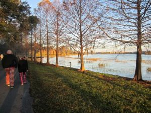 7 parques e reservas naturais em Orlando: Parque Bill Frederick Park at Turkey Lake