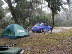 7 parques e reservas naturais em Orlando