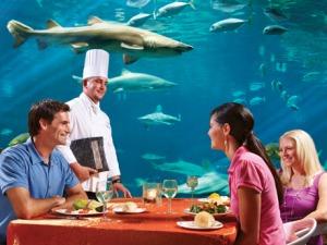 Restaurante Sharks Underwater Grill do SeaWorld Orlando