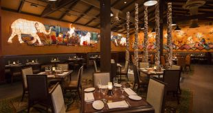 Restaurantes do parque Disney Animal Kingdom em Orlando 5