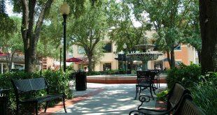 Onde ficar em Tampa: melhores regiões 3