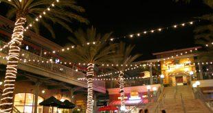 O que fazer à noite em Tampa 1